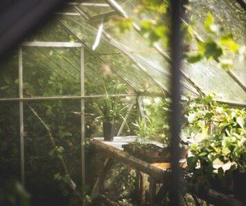 Topla greda: optimalni pogoji tudi za gojenje zelenjave pozimi