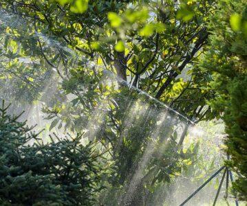 Namakalni sistemi za vrt v Sloveniji vse nujnejši pripomoček