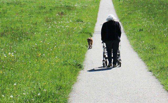 Hodulja – kako izbrati pravo za vaše potrebe?